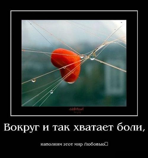 Вокруг и так хватает боли, наполним этот мир любовью