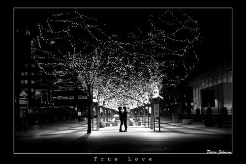 Влюбленная пара под сенью гирлянд - картинки про любовь