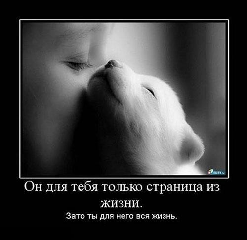 Ты для него вся жизнь
