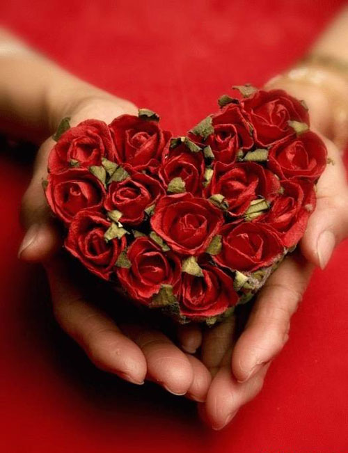 Сердце из роз в ладонях