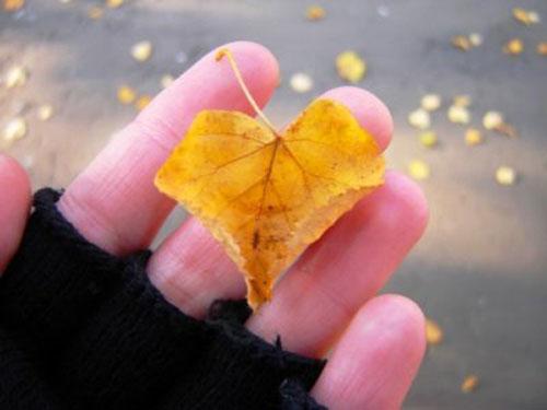 Маленькое осенне сердечко на пальцах