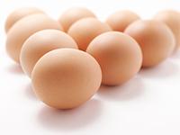 Если приснилось яйцо, яйца
