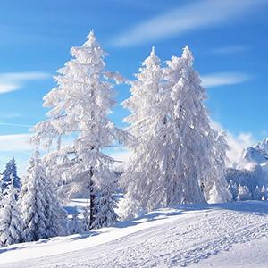 Цитаты о зиме