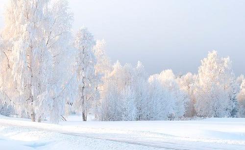 Зимнее утро. Пушкин
