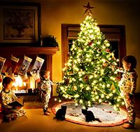 Новогодние приметы, приметы о новом годе