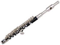 Стихи про флейту