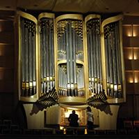 Стихи про орган