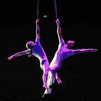Стихи про воздушных гимнастов