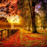Стихи про осень, осенние стихи