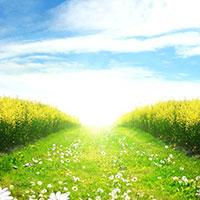 Стихи про солнечный день