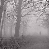 Стихи про туман