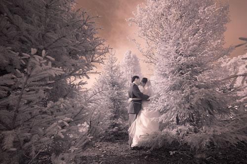 Поцелуй у заснеженной елки