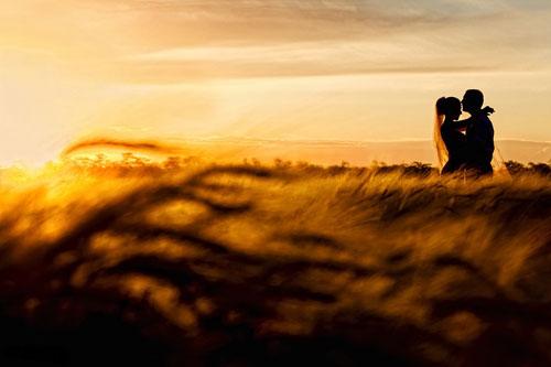Свадьба в пшеничном поле