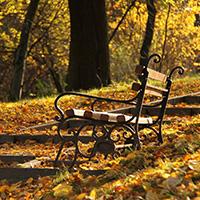 Стихи про скамейку