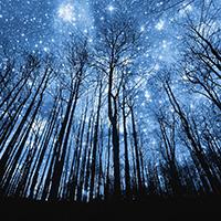 Стихи о звездной ночи