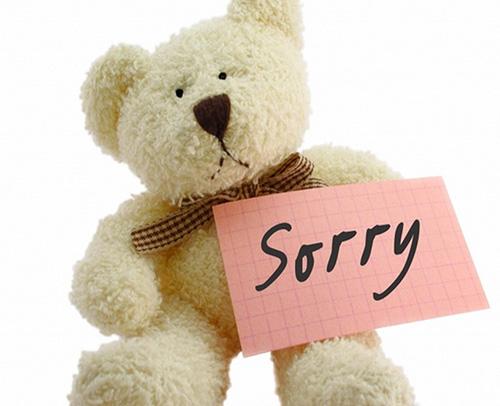Плюшевый медведь — Sorry