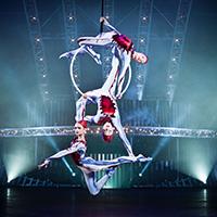 Стихи про цирк