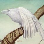 Стихи о белой вороне