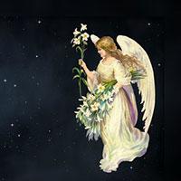 Вечерний ангел