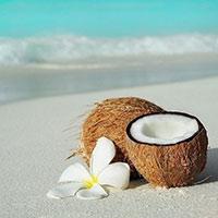 Стихи про кокос