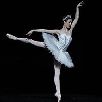 Стихи о балерине