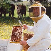 Стихи о пчеловоде, пасечнике