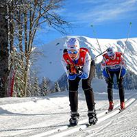 Стихи о лыжниках