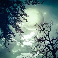 Ночь в Пасанаури