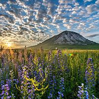 Стихи о Башкирии, Башкортостане