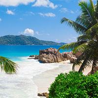 Стихи о Багамских островах, Багамах