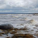 Стихи про Белое море