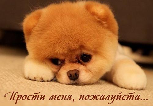 Прости меня, пожалуйста,.. и эта грусть...