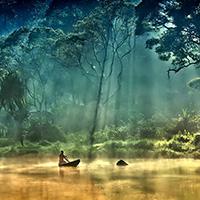 Стихи о реке Амазонка