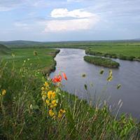 Стихи о реке Аргунь
