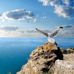Стихи о Черном море