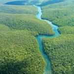 Стихи о реке Ориноко