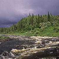Стихи о реке Подкаменная Тунгуска