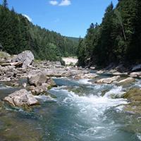 Стихи о реке Прут