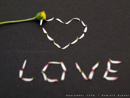 Любовь начертанная лепестками