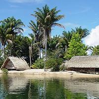 Стихи о Суринаме