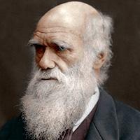 Стихи о Чарльзе Дарвине
