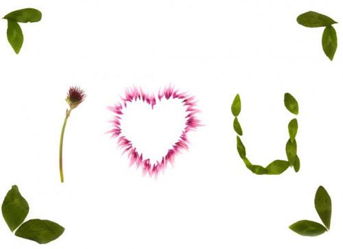 Флора любви