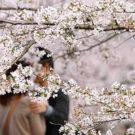 Весна. Цитаты, афоризмы, высказывания о весне