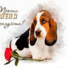 Прости меня, пожалуйста! Пёсик и роза