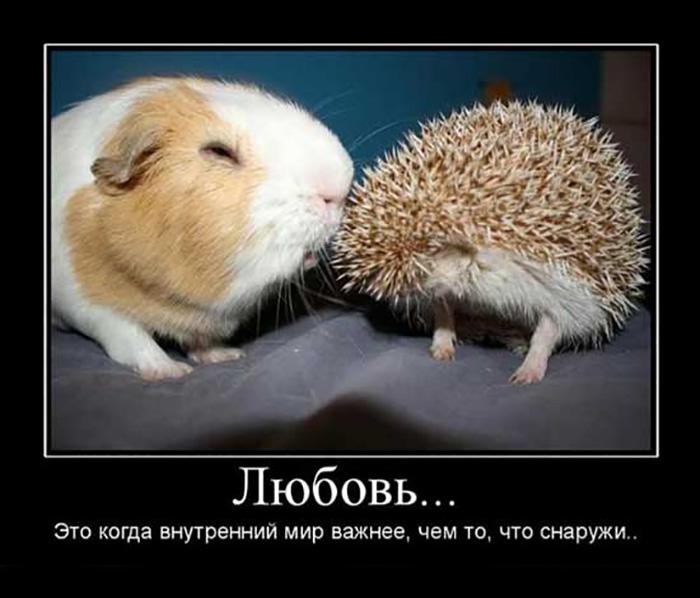Любовь - это когда внутренний мир важнее, чем то, что снаружи...