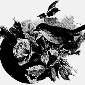 Пора забыться полным счастья сном - Александр Блок
