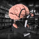 Тренируй мозги - стихах