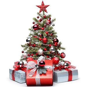 Загадки о Новогодней елке