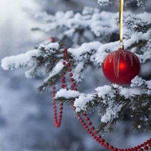 Старый Новый год - Андрей Вознесенский