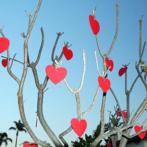 Традиции празднования Дня Святого Валентина в странах мира
